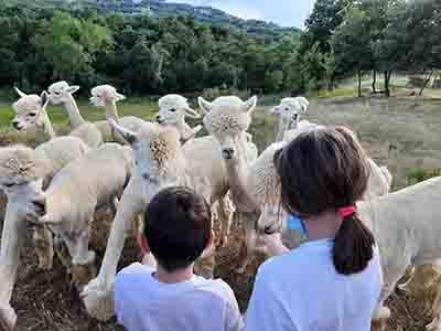 Visita allevamento di 2 bambini